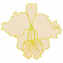 Cattleya Orchid embroidery design