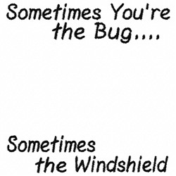 Windshield Bug embroidery design