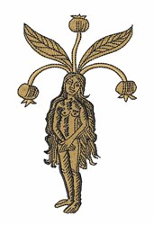 Mandrake Female embroidery design