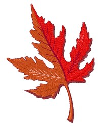 Fall Maple Leaf embroidery design