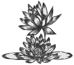Lotus Flowers embroidery design