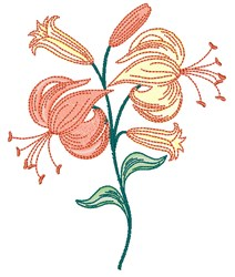 Lily Blooms embroidery design
