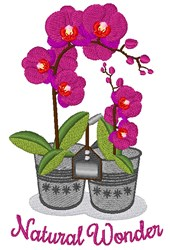 Natural Wonder embroidery design