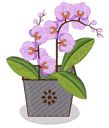 Potted Orchid embroidery design