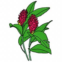 Alpinia Coccinea embroidery design