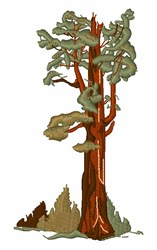 General Sherman Tree embroidery design