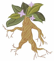 Floral Mandrake embroidery design