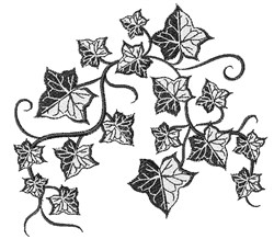 Black Ivy embroidery design