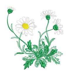 Run Stitch Daisies embroidery design
