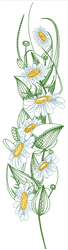 Daisies Vertical Border embroidery design