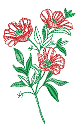 Peonies Outline embroidery design