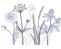 Sketched Flowers embroidery design