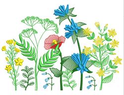 Decorative Floral Border embroidery design
