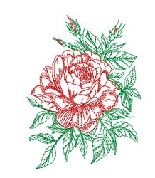 Sketched Rose Bloom embroidery design
