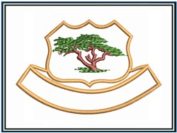 Golf Club Patch embroidery design