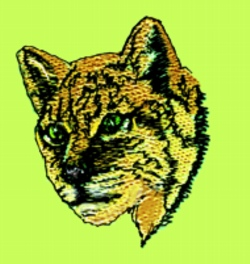 Lynx embroidery design