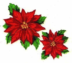 Poinsettias Applique embroidery design