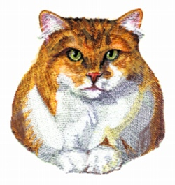 Tabby Persian embroidery design