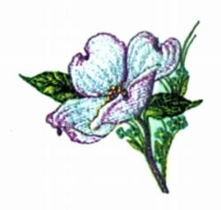 Dogwood Flower embroidery design