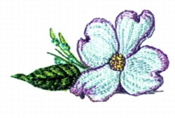 Dogwood  Bloom embroidery design