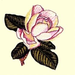 Magnolia  Flower embroidery design