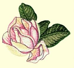 Magnolia   Bud embroidery design