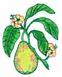 Pear in Bloom embroidery design