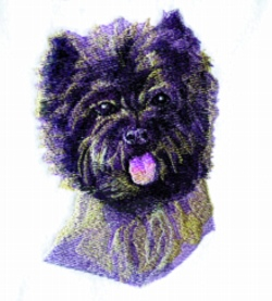 Cairn Terrier embroidery design