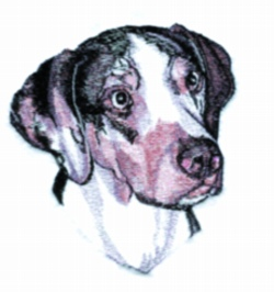Catahoula embroidery design