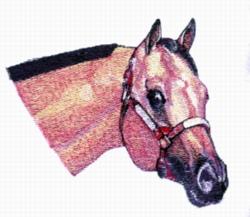 Buckskin embroidery design