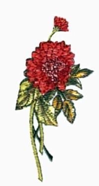 Chrysanthemums embroidery design