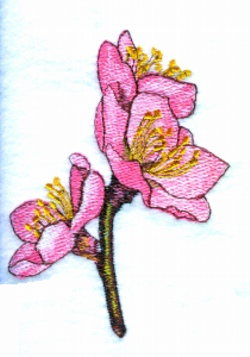Peach Blossoms embroidery design