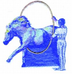 Circus Horse embroidery design