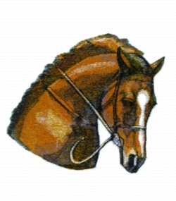 Horse Head Study embroidery design