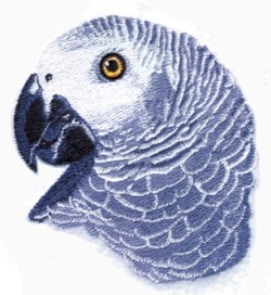 African Grey Head embroidery design