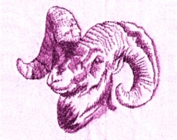 Rams Head embroidery design