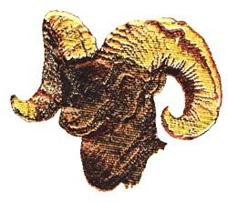 Bighorn Sheep embroidery design
