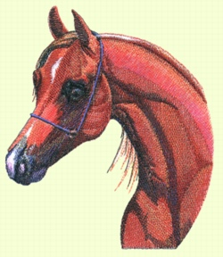 Arabian Head embroidery design