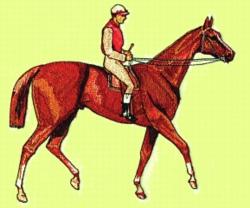 Thoroughbred & Jockey embroidery design
