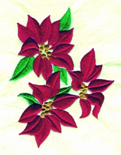 Poinsetta embroidery design