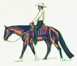 Western Pleasure embroidery design