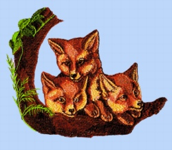 Foxes embroidery design