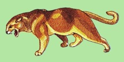 Large Cougar embroidery design