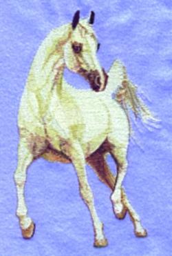 Arabian embroidery design