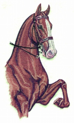 Three Gaited Horse embroidery design