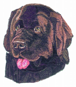 Newfoundland Dog embroidery design