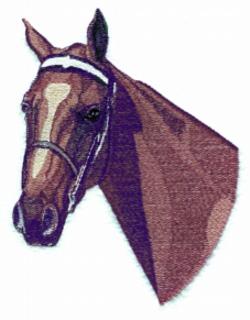 American Saddlebred embroidery design