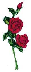 Triple Roses embroidery design