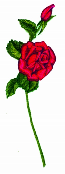 Long Stem Rose embroidery design