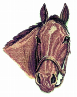 Mare embroidery design